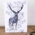 Rose Stag Greetings Card